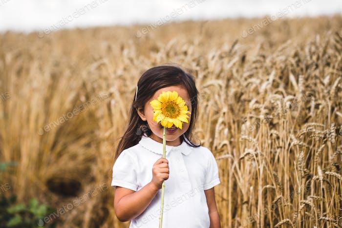 Glückliches kleines Mädchen riechen eine Sonnenblume auf dem Feld