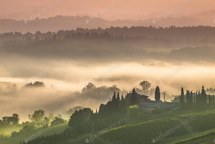 Tuscany Village Landscape on a Morning in July