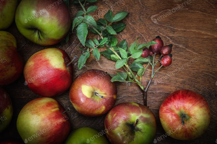 apples in bulk and a sprig with rose hips