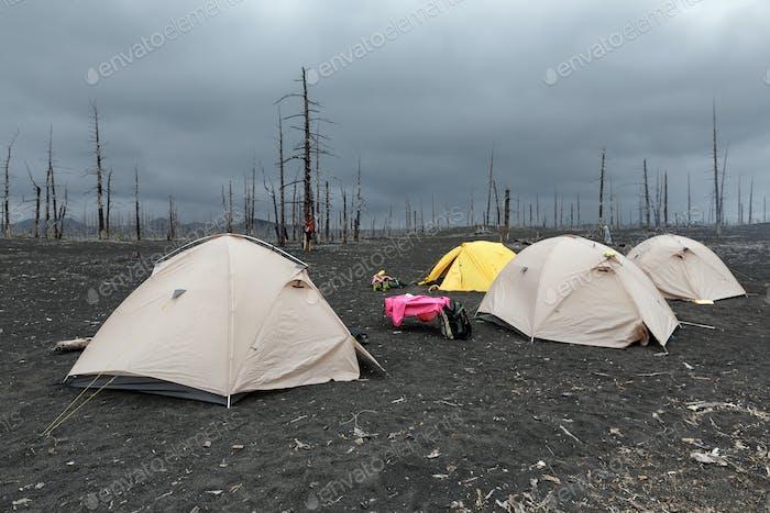 Tiendas de campaña turísticas en madera muerta en la península de Kamchatka