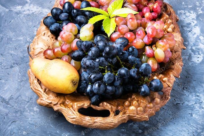 Seasonal autumn grapes