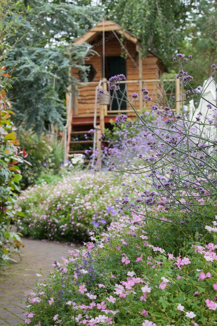 Garden of purple flowers with path and shed