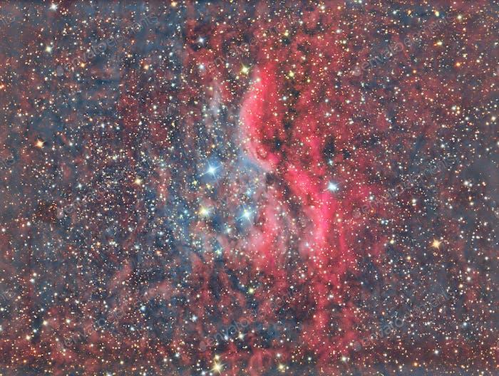 Propeller Nebula DWB 111