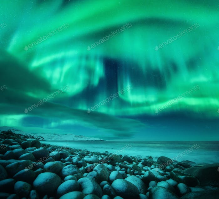 Aurora borealis over ocean. Northern lights in Teriberka, Russia