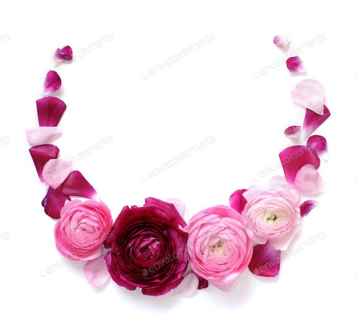 Kreis-Rahmen aus rosa Ranunkelblüten auf weißem Hintergrund