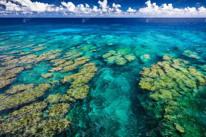 Tropical coral reef on Upolu island, Samoa, perfect for snorklin