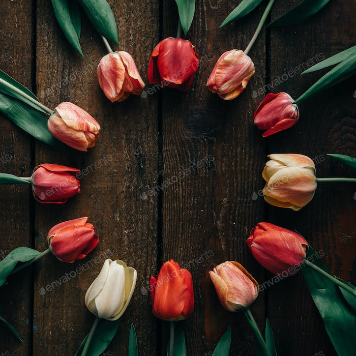 Tulips on wooden background.