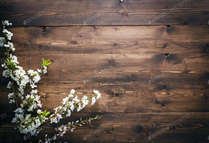 Sommerblumen auf Holz Textur Hintergrund