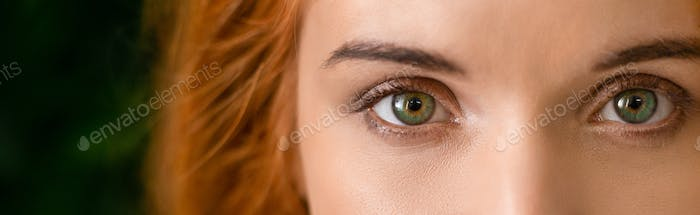 Green eyes of young redhead woman panorama