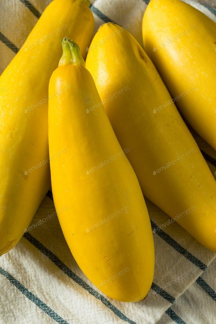 Yellow Organic Straight Neck Zucchini
