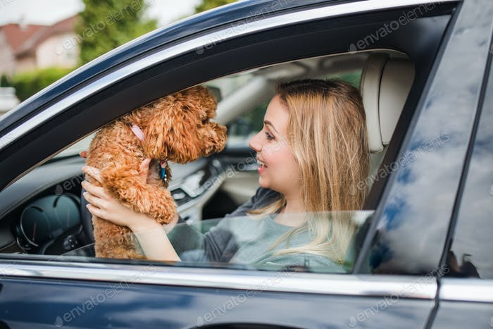 Young woman driver with a dog sitting in car