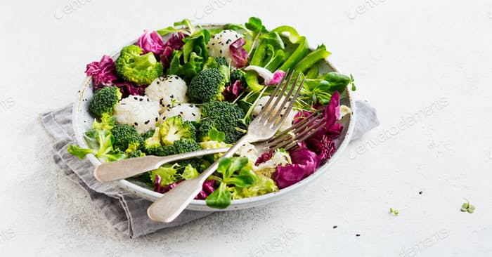 Vegetarian salad with rice balls