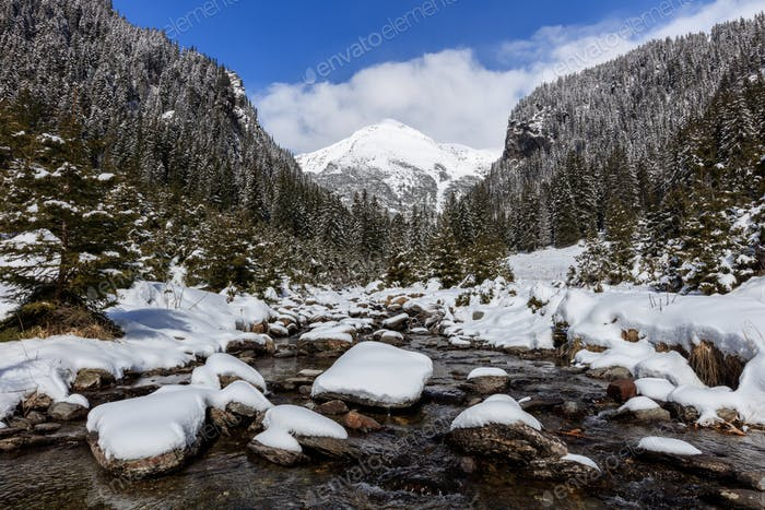 The Fagaras Mountains
