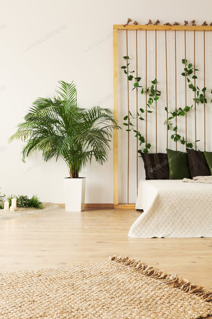 Bright bedroom with plants