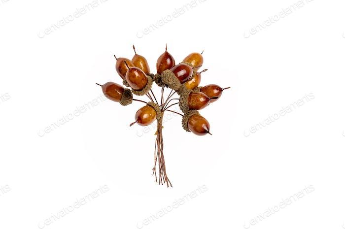 Christmas bouquet of acorns