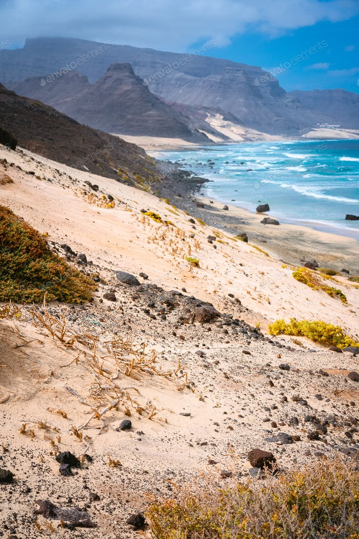 Stunning desolate landscape of sand dunes and desert plants in front of ocean waves on Baia Das