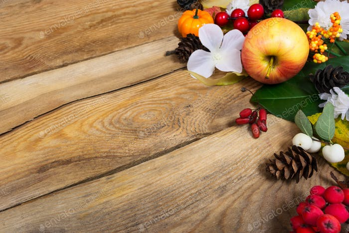 Thanksgiving background with apple, autumn leaves and white flow