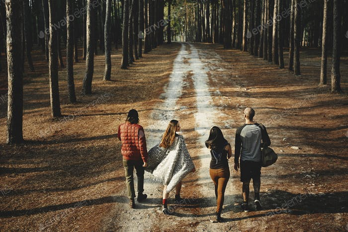 Friends Walking Outdoors Forest Concept