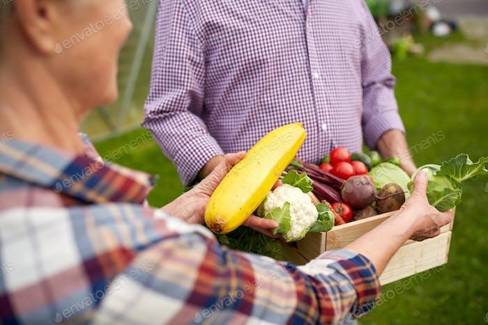 älteres Paar mit Kiste Gemüse auf dem Bauernhof