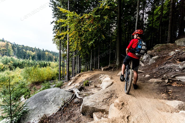 Mountain biker riding cycling in autumn forest trail