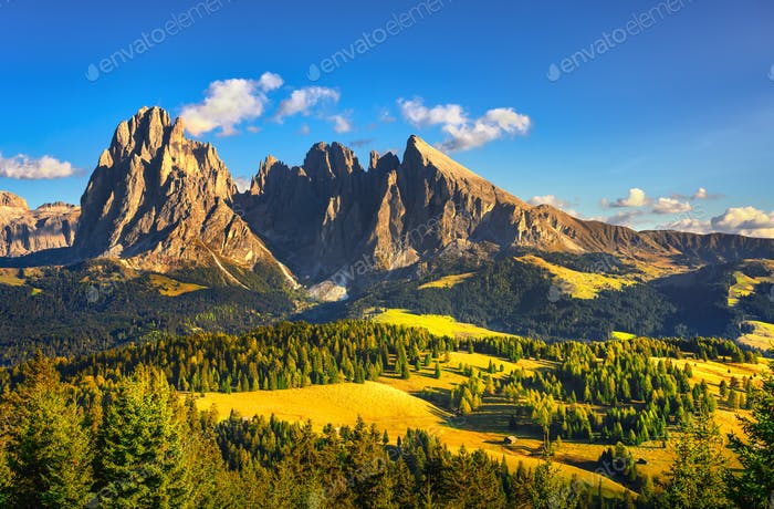 Alpe di Siusi or Seiser Alm and Sassolungo mountain, Dolomites A