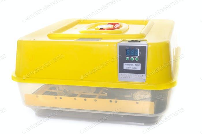 incubator for eggs