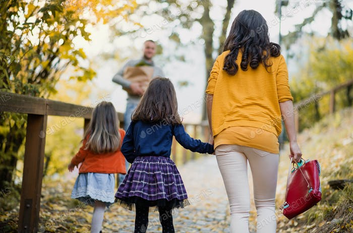 A rear view of young family with children walking in park in autumn