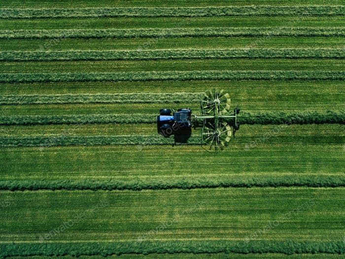 Blue tractor mowing green field, aerial view