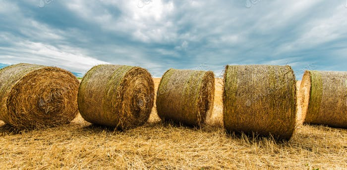 Countryside Hay Bales