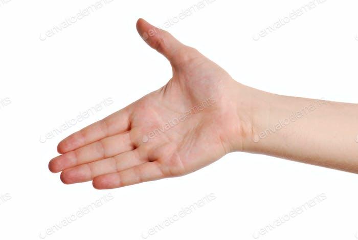 gesture greeting