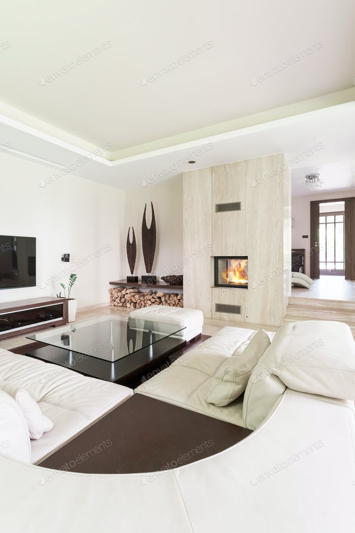 Extravagant lounge room for art lovers