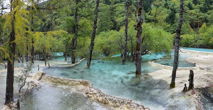 Bonsai Pond in Huanlong scenic Area