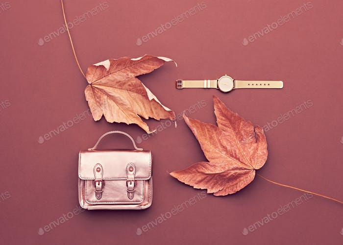 Autumn Arrives. Fashion Lady Minimal. Fall Leaves.