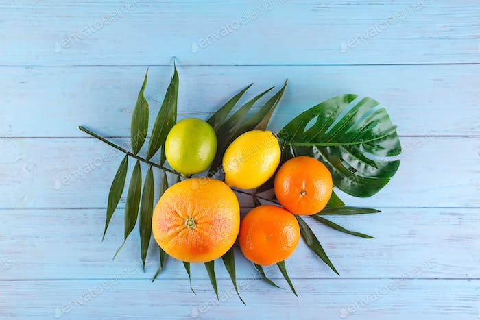Citrus fruits orange, lemon, grapefruit, mandarin, lime on palm leaves on blue wooden background