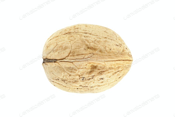 High quality macro picture of walnut isolated on white