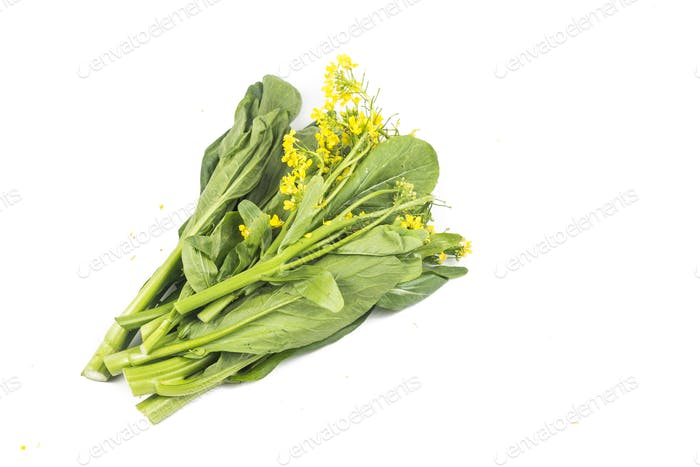Bunch of floral choy sum green vegetable popular among the Chine