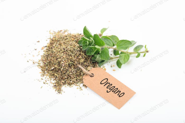 Fresh and dried oregano on white background