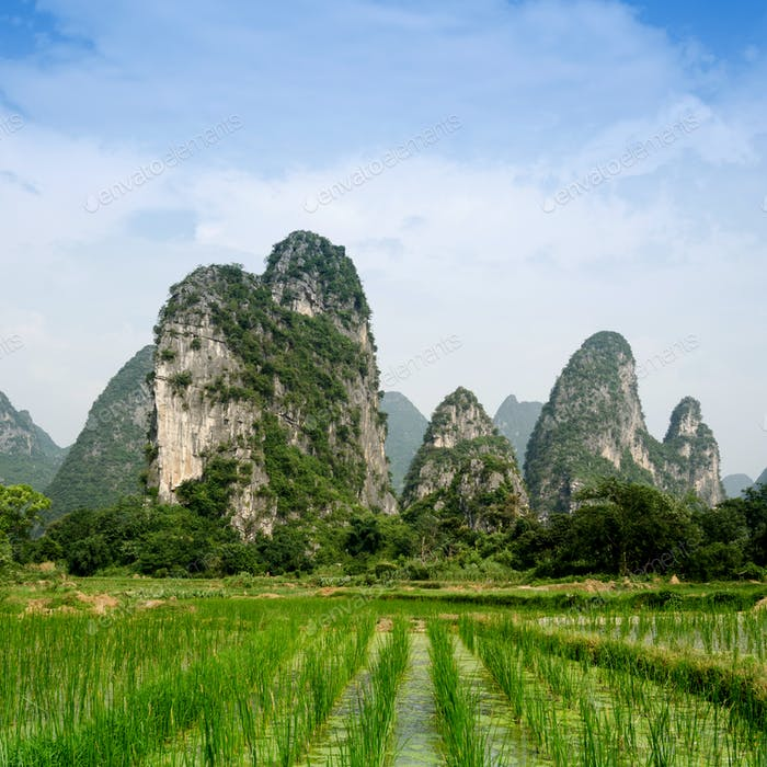 Pastoral scenery in Guilin