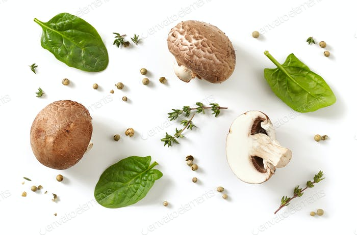 composition of fresh mushrooms on white background