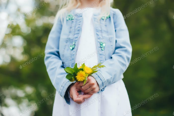 Small girl is holding yellow chamomile flowers