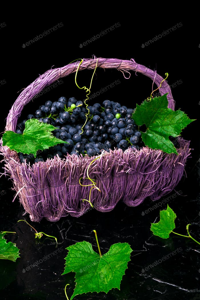 Red wine grapes in voiolet basket on bllack background.