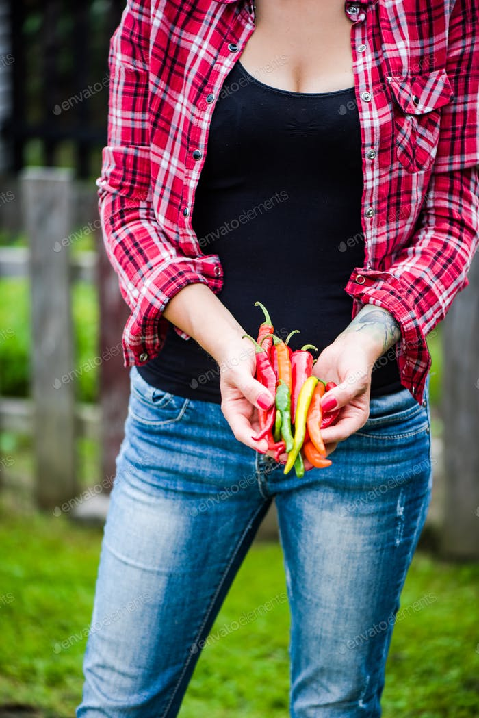 Young woman picking spicy peppers in garden