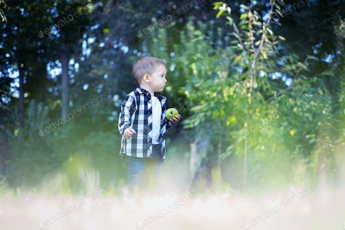 Kleiner Junge mit Apfel in kariertem Hemd