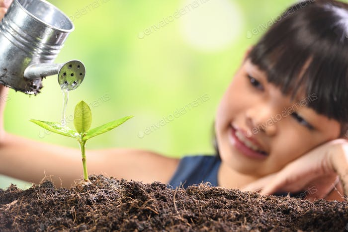 Girl and Young plant