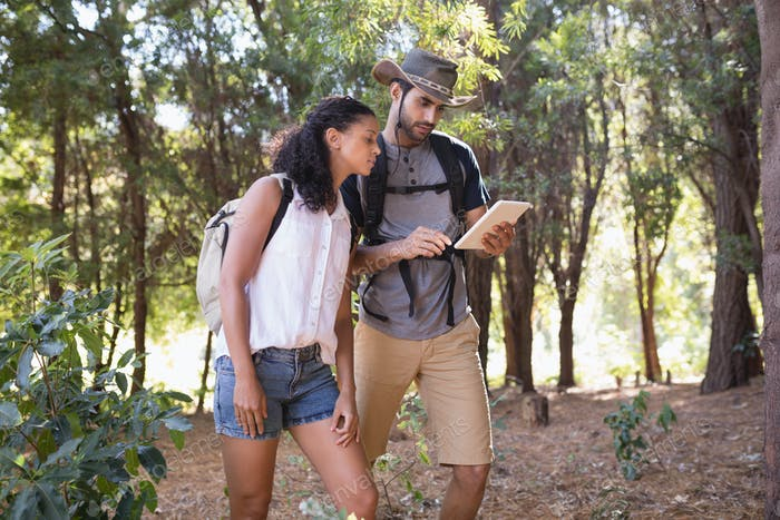 Couple using digital tablet in forest