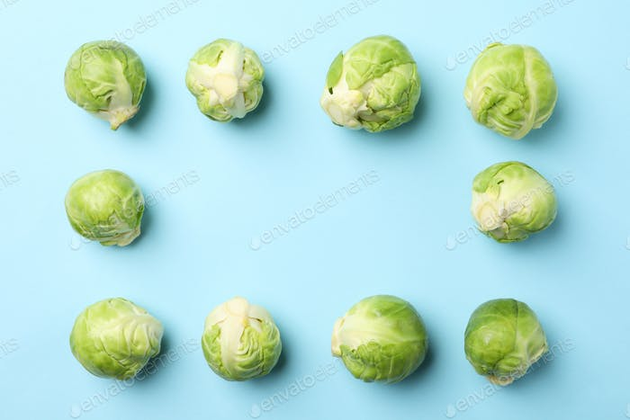 Flat lay with brussels sprout on blue background, top view