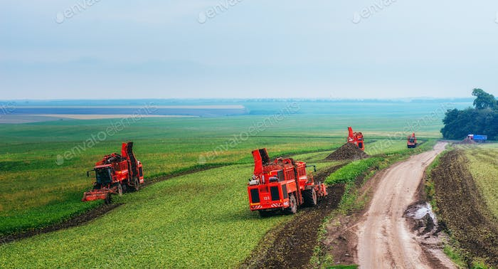 tractors working in the field