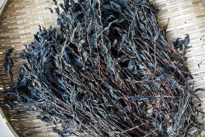 High angle close up of blue indigo in a textile plant dye workshop.