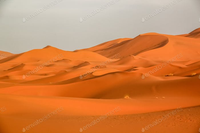 Stunning sand dunes of Merzouga