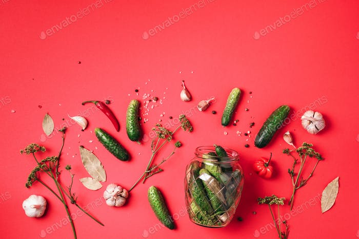 Ingredients for marinated gherkins, pickled cucumbers on red background. Culinary recipe. Concept of